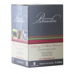 Saumur Rouge BIB 5L